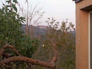 Balkon Aussicht 2012 07